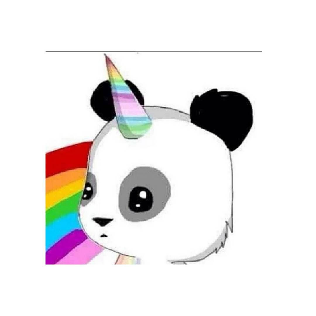 Pandicorn Unicorn Panda Chibi Panda Cute Drawings Unicorn Art