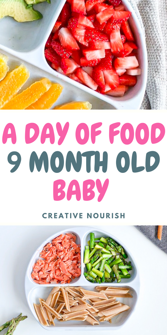 9 Month Old Meal Plan - Nutritionist Approved | Creative ...