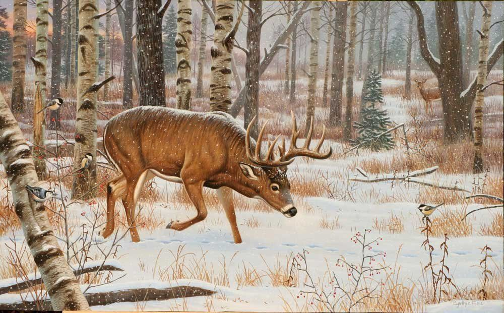 North American Big Game 36 Hunting art, Deer painting