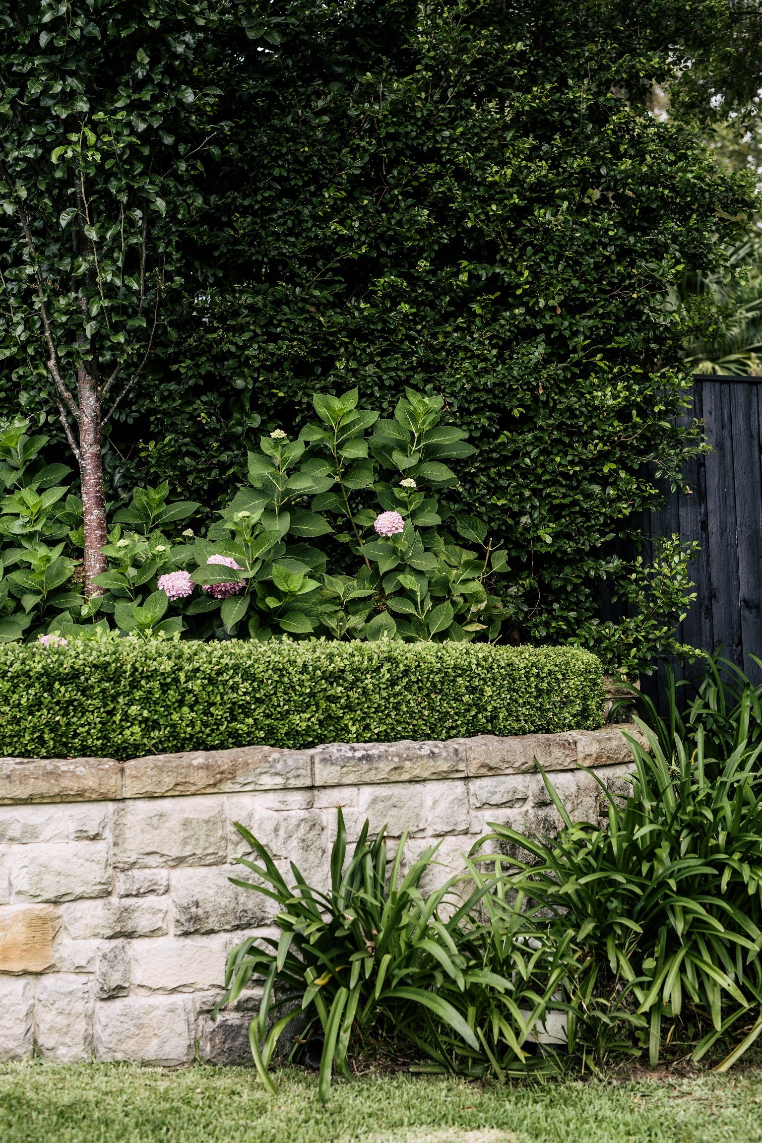 Harrison's Landscaping | Formal garden design featuring ...