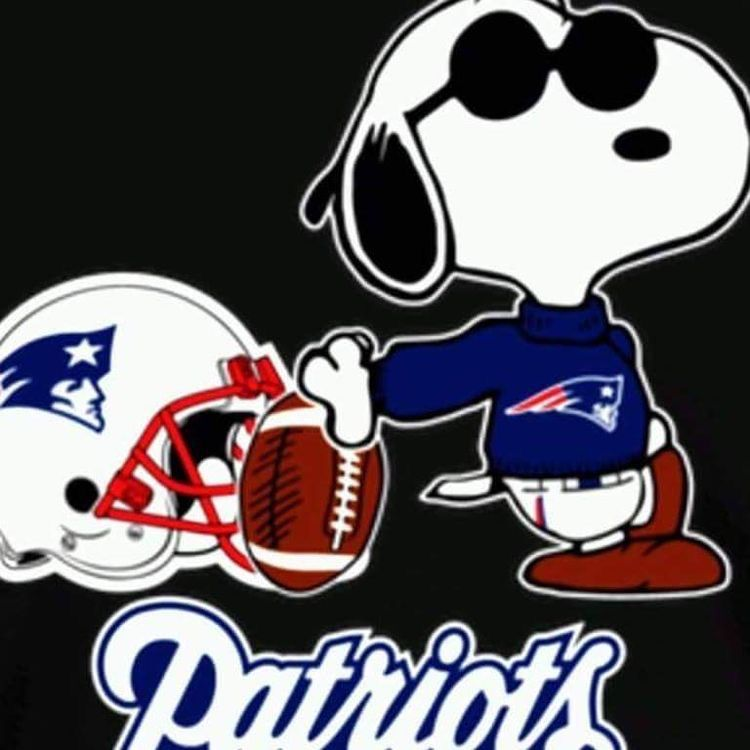 Patriots fans image by Lisa Peterson on Peanuts other NFL