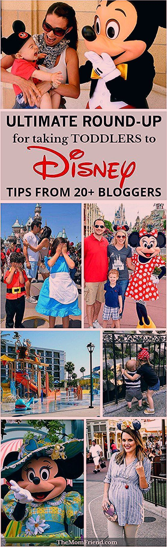 Preparing for Disney with Toddlers: Tips & Secrets from 20+ Bloggers   The Mom Friend