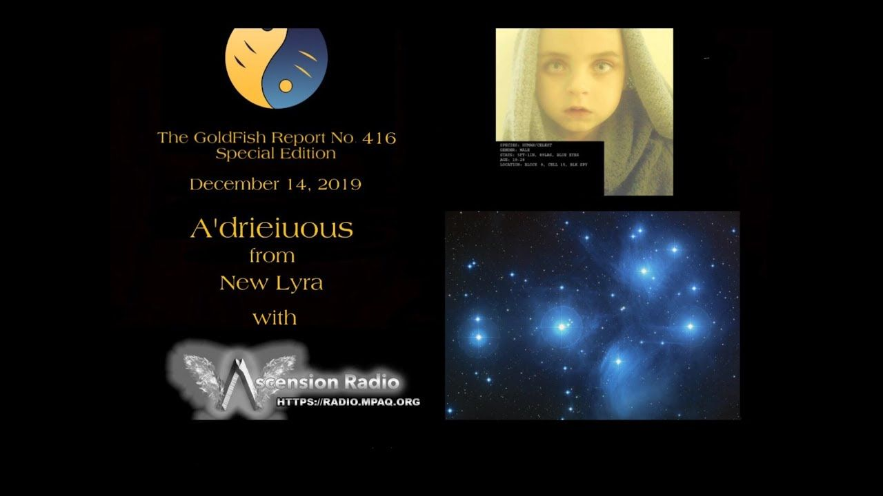 The GoldFish Report No. 416 Livestream Q & A w/ A'drieiuous from the Pleaides