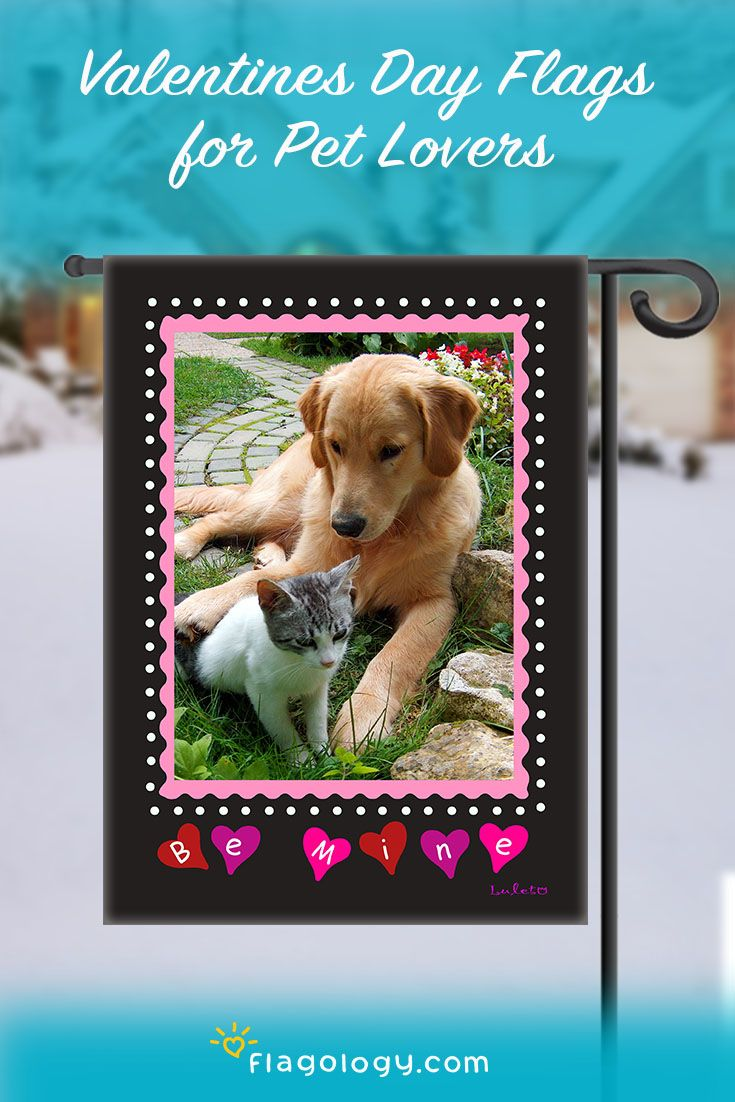 Make a personalized photo flag for Valentines Day featuring your dog, cat, or other special pet! Feature your photo on a flag you create in minutes online. High quality double sided flags, printed in North Carolina. Make a one-of-a-kind gift for your pet lover!