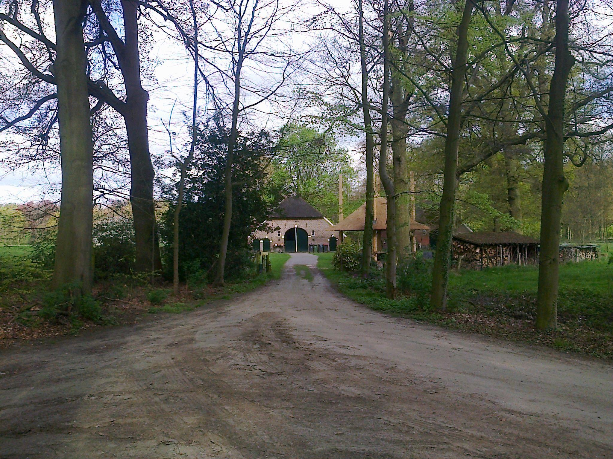 2014-04-13 Voorbij het kasteel De Kieftskamp loop je over mooie beukenlanen richting Linde