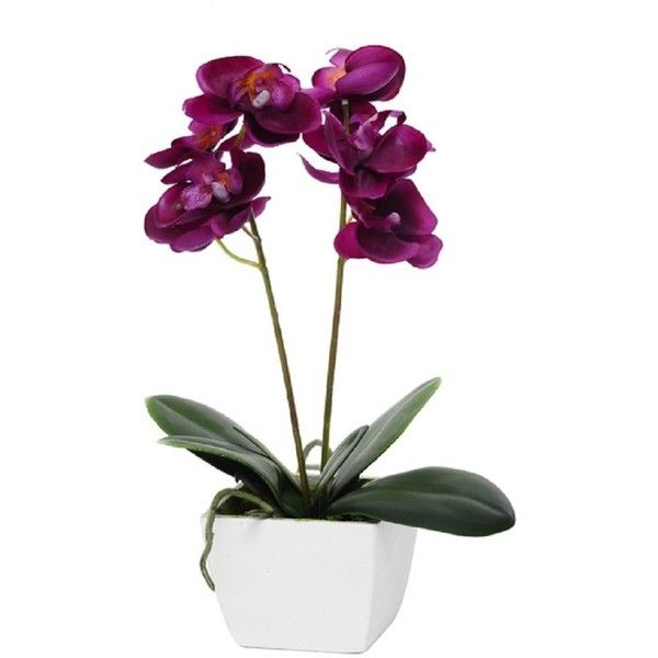 Artificial orchid potted deep pink fuschia silk flower plant in artificial orchid potted deep pink fuschia silk flower plant in white 17285 mightylinksfo