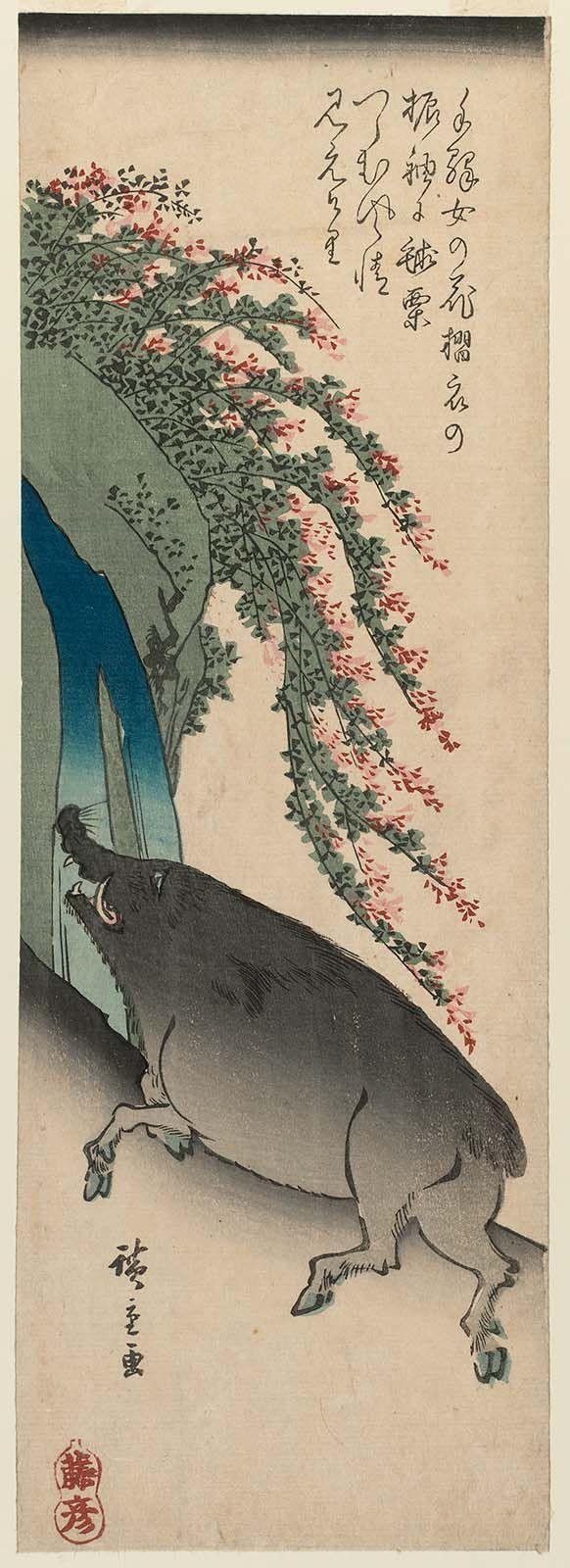 Boar with Waterfall and Bush Clover, from an untitled series of the twelve zodiac animals  Japanese Artist Utagawa Hiroshige I (Japanese, 1797–1858), Publisher Fujiokaya Hikotarô (Shôgendô) (Japanese)  CATALOGUE RAISONNÉ Ukiyo-e shûka 14 (1981), Hiroshige list, p. 240, chûtanzaku #17.12  DIMENSIONS Chûtanzaku; 37 x 12.9 cm (14 9/16 x 5 1/16 in.)  Currently at the MFA ACCESSION NUMBER 21.7040  MEDIUM OR TECHNIQUE Woodblock print (nishiki-e); ink and color on paper