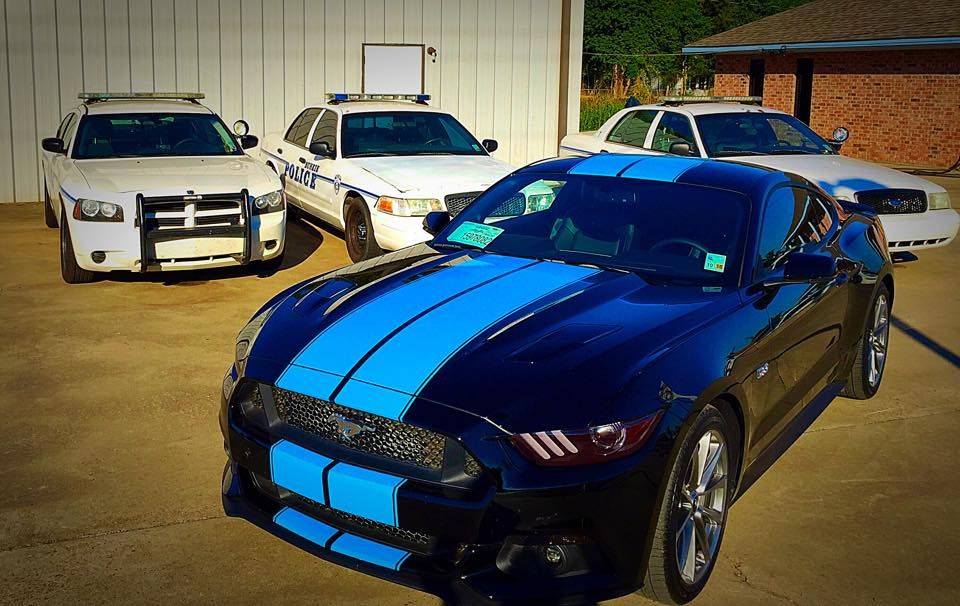 Grabber Blue Stripes On 2015 Ford Mustang Gt 2015 Ford Mustangs