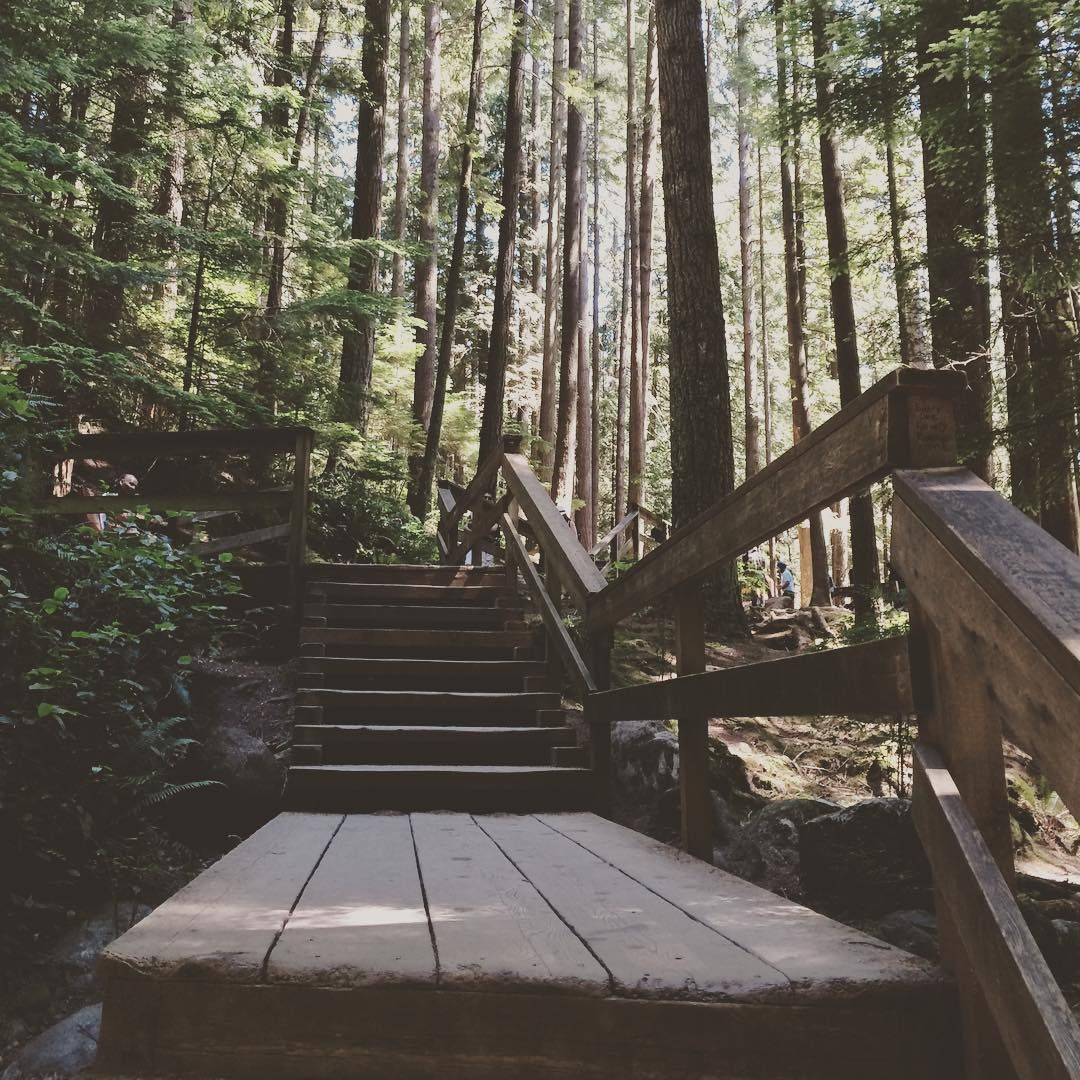 Into the woods. #exploreCanada #exploreVancouver #exploreBC #vancity #lynncanyon #lynncanyonpark #Vancouver #Canada #BC