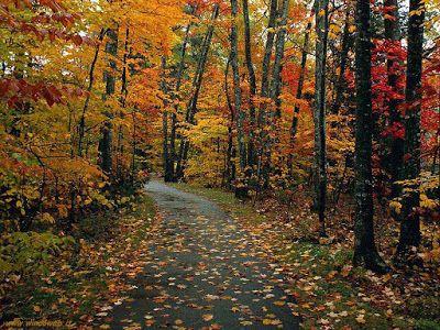 """11 settembre 2015 Scritture in attesa...: Pit Stop """"Note scritte"""" (ascoltando la musica di S..."""