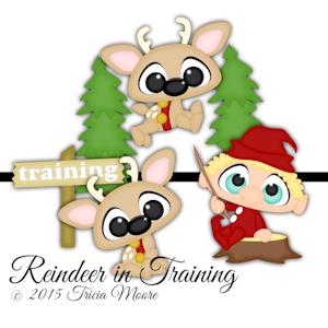 Reindeer in Training