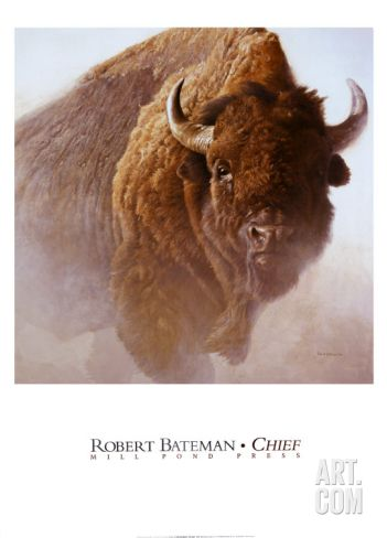 Chief Art Print by Robert Bateman at Art.com