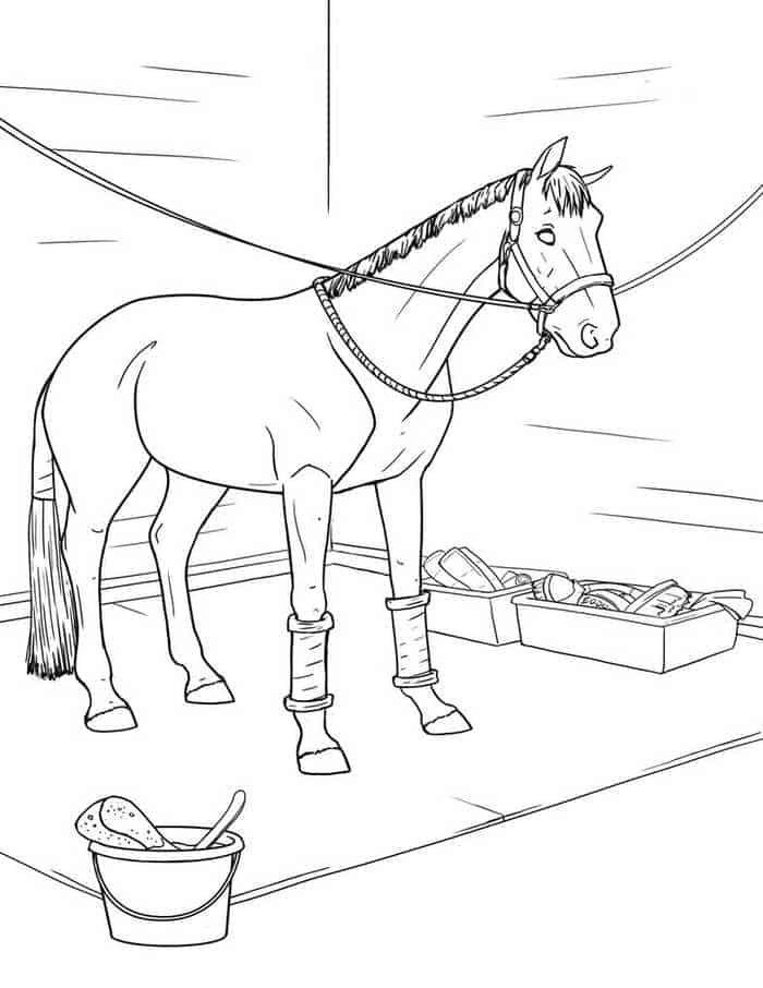 ausmalbilder gratis pferde  ausmalbilder pferde zum