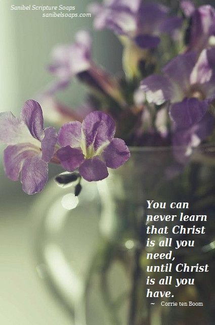 You can never learn that Christ is all you need, until Christ is all you have.
