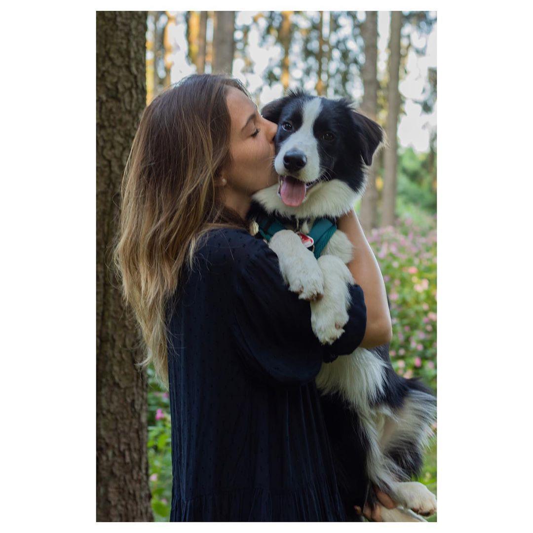 Ein Hund Ist Ein Begleiter Der Uns Daran Erinnert Jeden Augenblick Zu Geniessen Nbsp Nbsp Hund Nbsp Nbsp Nbsp Nbsp Dog Nbsp Nbsp Nbsp Nbsp