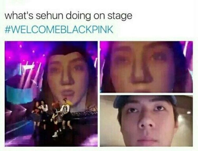 Funny Meme Kpop Bts And Exo : I'm weakkkk all about exo pinterest kpop exo blackpink and nct