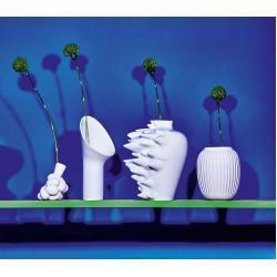 Vasen & Blumenvasen #fallwallpapers