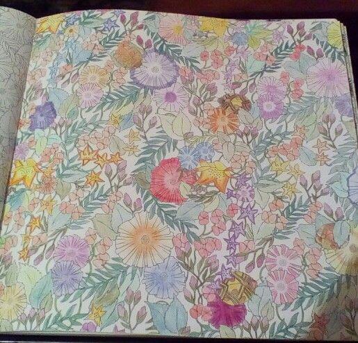 Millie Marotta Animal Kingdom Done In Pencils Adult ColoringColoring BooksDoodle