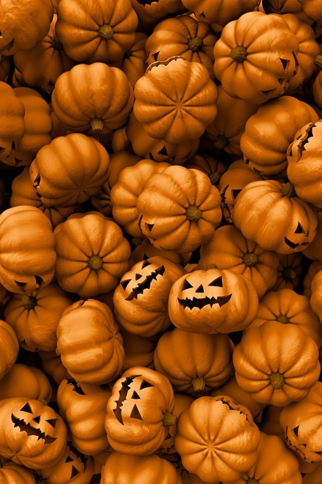 The Great Pumpkin Wallpaper Halloween Holidays Wallpapers In Jpg