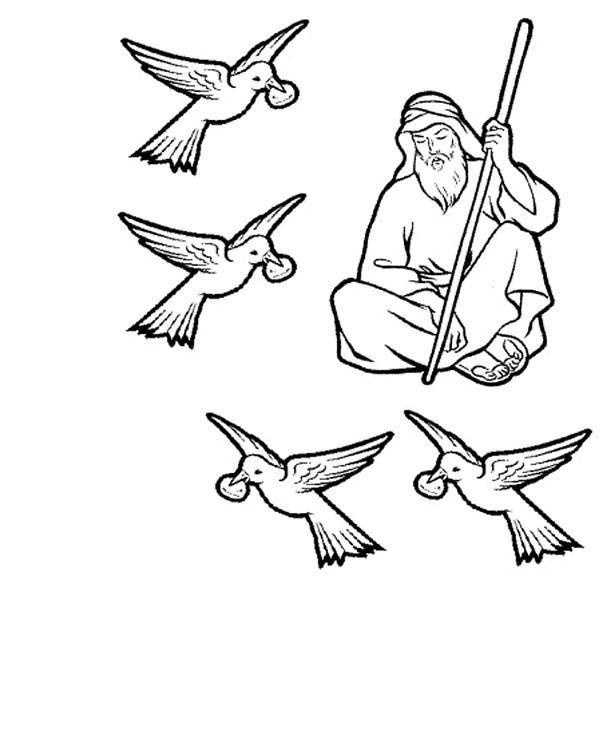 Elijah Fed By Ravens Prophet Elijah Coloring Pages Fed By Ravens Prophet Coloring Pages Bible Coloring Pages Free Bible Coloring Pages