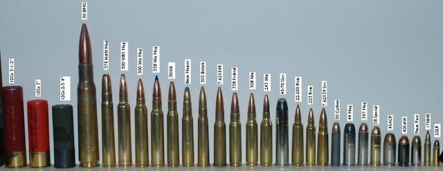 Ammo Bullet Comparison Chart Picture Ammo Guns And Ammo Bullet
