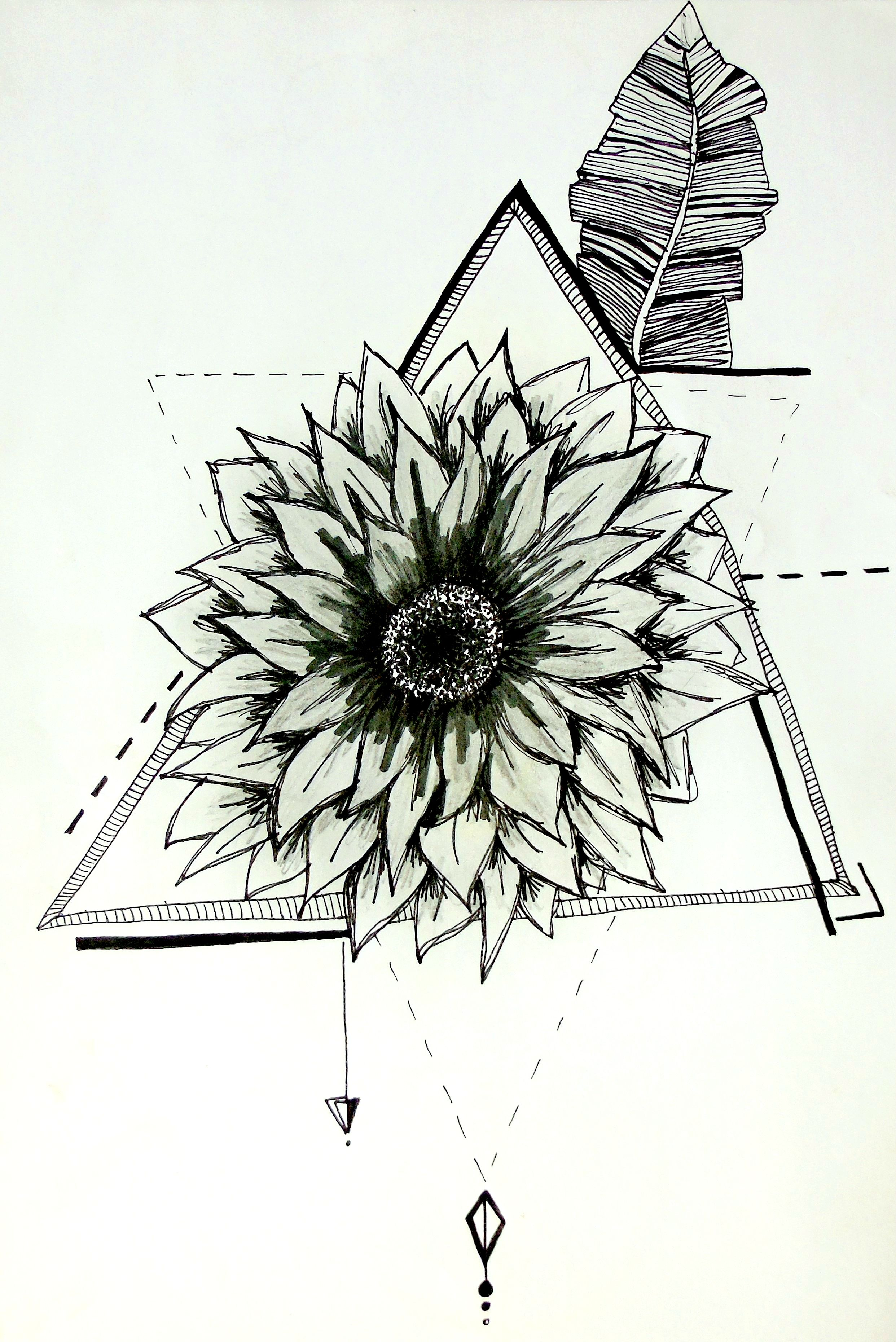 Geometric Sunflower Illustration Sunflower Illustration Sunflower Tattoos Tattoos
