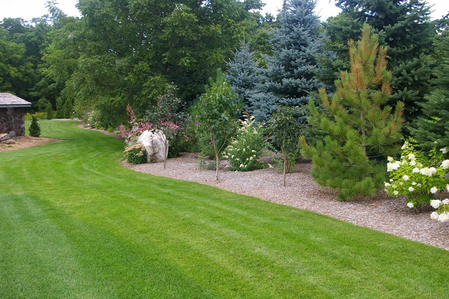 Uncategorized Tree Landscaping Ideas evergreen landscaping pictures garden pinterest privacy ideas for outdoor home design with feature garden
