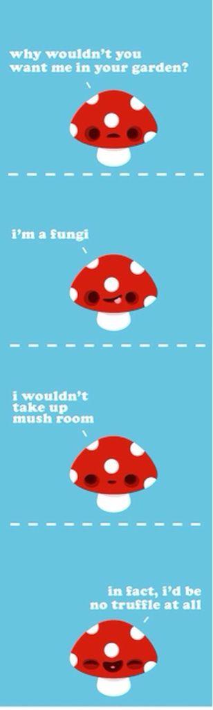 mushroom puns for the lulz pinterest mushroom puns
