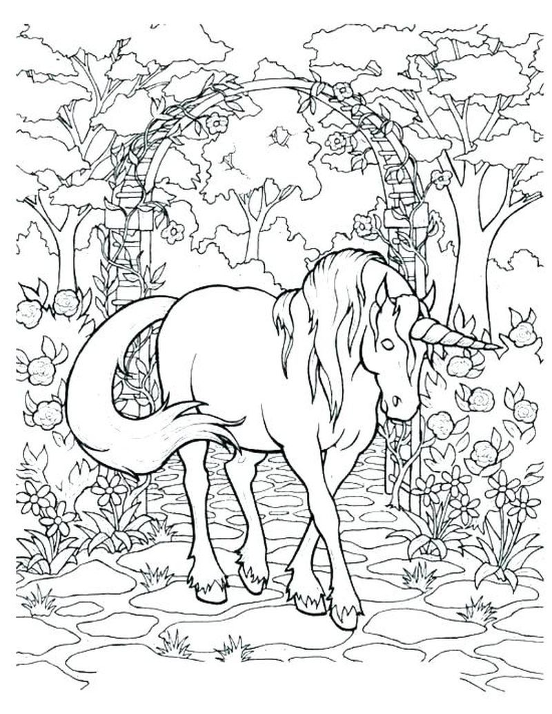 Lisa Frank Cheetah Coloring Pages Unicorn Coloring Pages Horse Coloring Pages Animal Coloring Pages