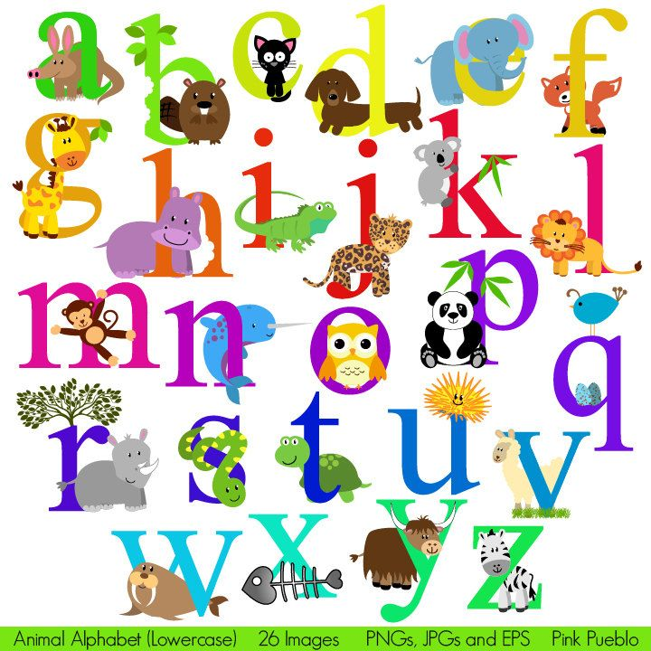 Animal alphabet. The name of each animal starts with the letter ...