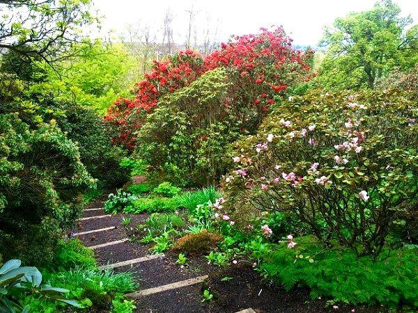 Branklyn Garden Perth Scotland Scotland Perth Scotland Greenock