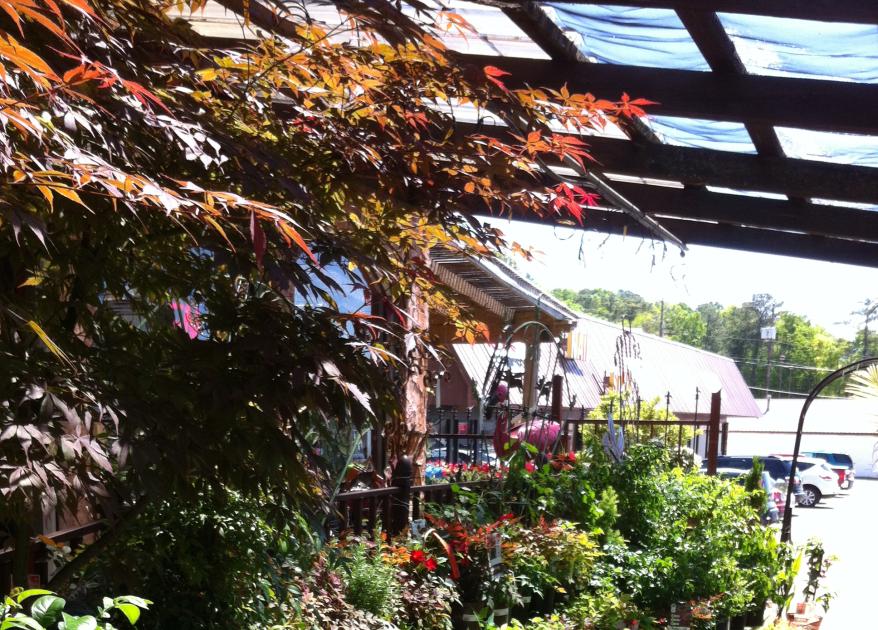 Image Result For Warren Family Garden Center Newsletter Download