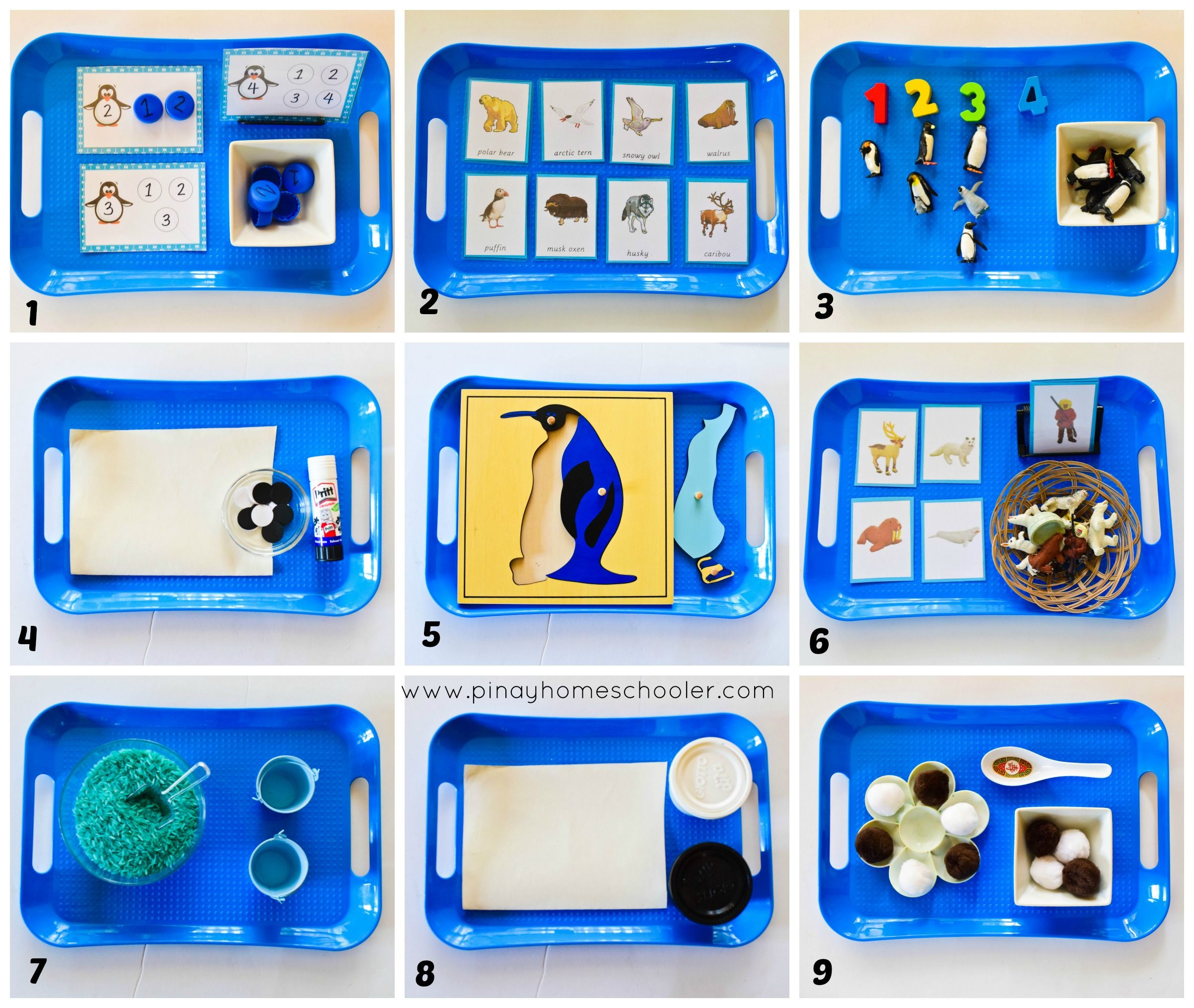 Arctic And Antarctica Activities For Toddlers