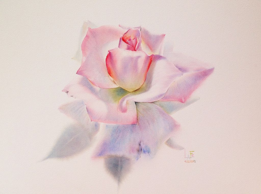 Watercolor Without Drawing By Lafe Flower Drawing Rose Painting