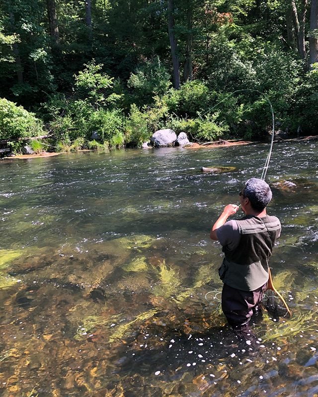Instagram Fly Fishing Fishing Pictures Fly Fishing Basics