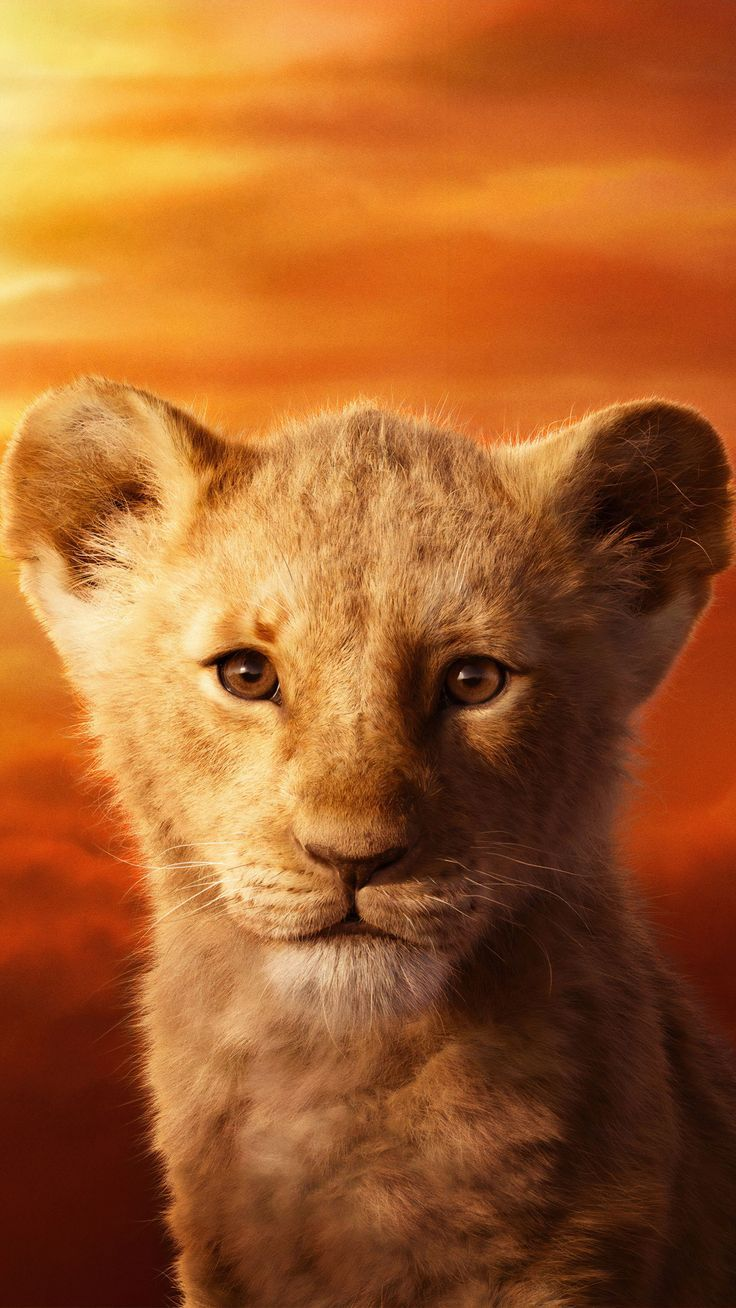 The Lion King Review A Dramatic Remake Disney Animation