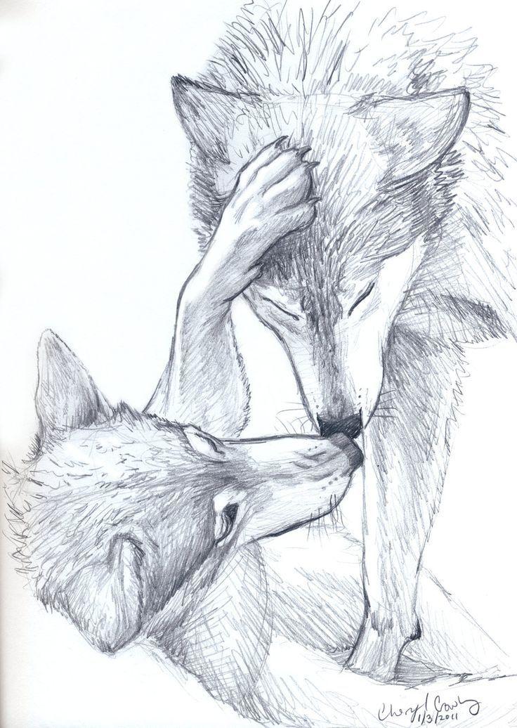 Рисунки карандашом несложные но красивые волки