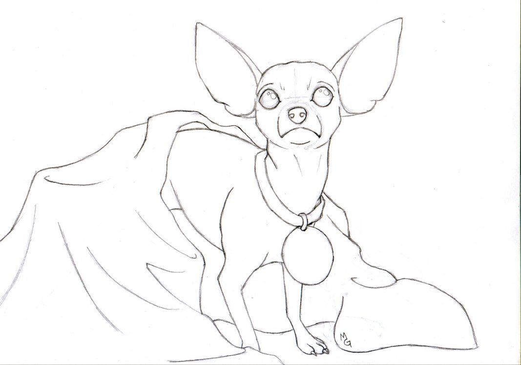 Chihuahua by the-kawaii-ferret   Coloring Pages   Pinterest   Bilder