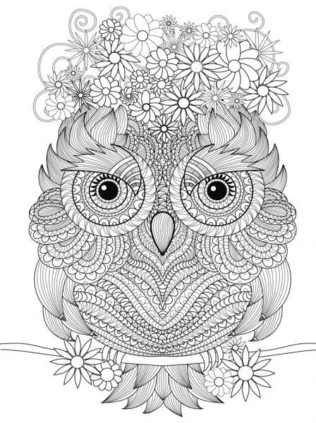 Pin By Alia Soufo On Coloring Owl Owl Coloring Pages Animal Coloring Pages Coloring Pages