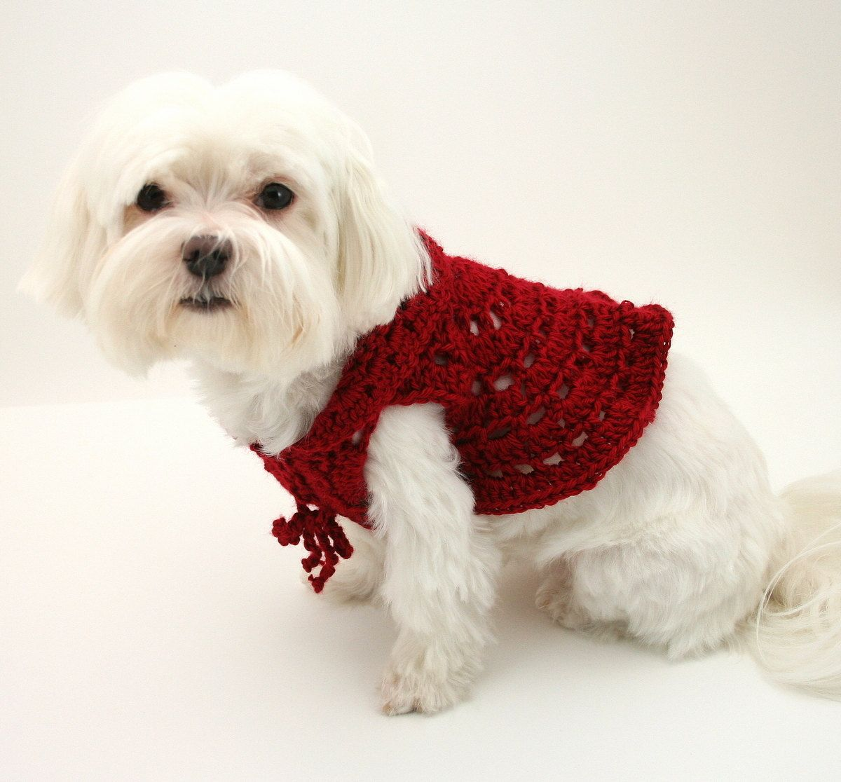 Dog sweater crochet pattern dog cardigan dengan gambar