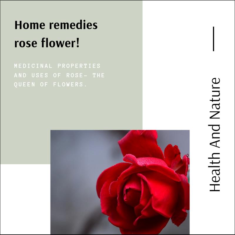 5 Simple Home Remedies Rose Flower Rose Flower Flowers Home Remedies