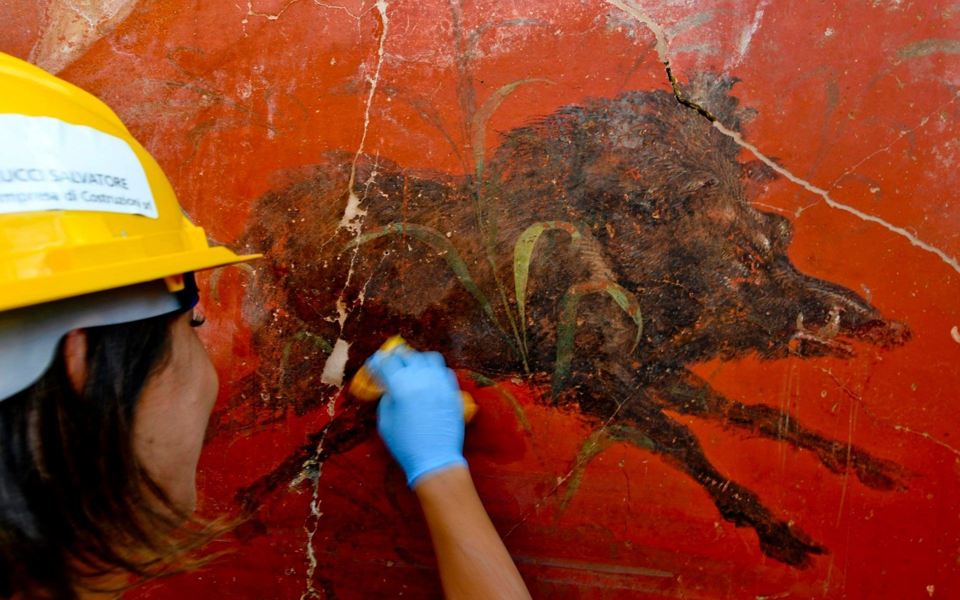 enchanting roman villa adorned with writhing snakes and