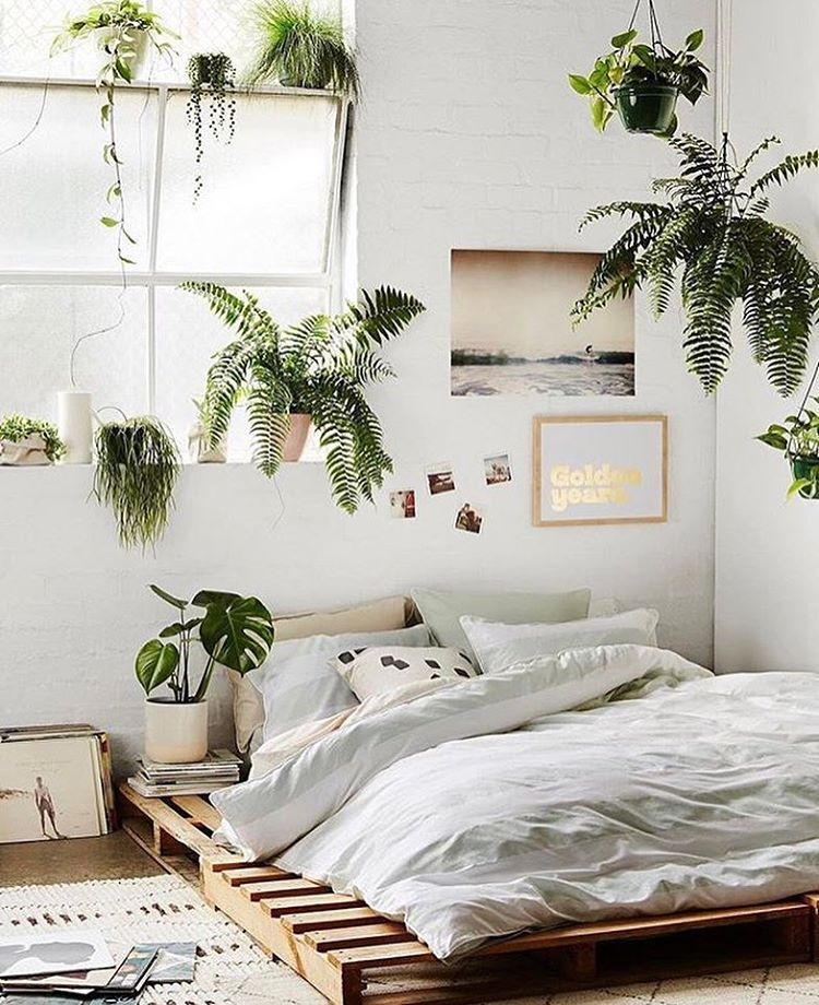 Bedroom Decor Ideas Styling With Plants Domenica S Picture By