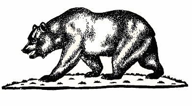 Pin On California Bear Flag