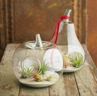 Hand Blown Glass Pear Shaped Planter Or Vase | Onestoponlinemarket.com · Terrarium  ContainersTerrarium ... Part 59