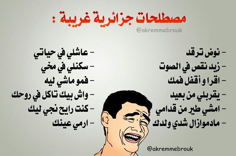 مصطلحات جزائرية غريبة Funny Quotes Mood Quotes Arabic Funny