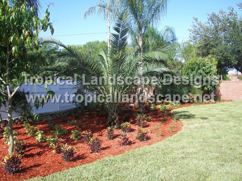 Tropical Landscaping Designs of Tampa Bay | Backyard | Pinterest ...