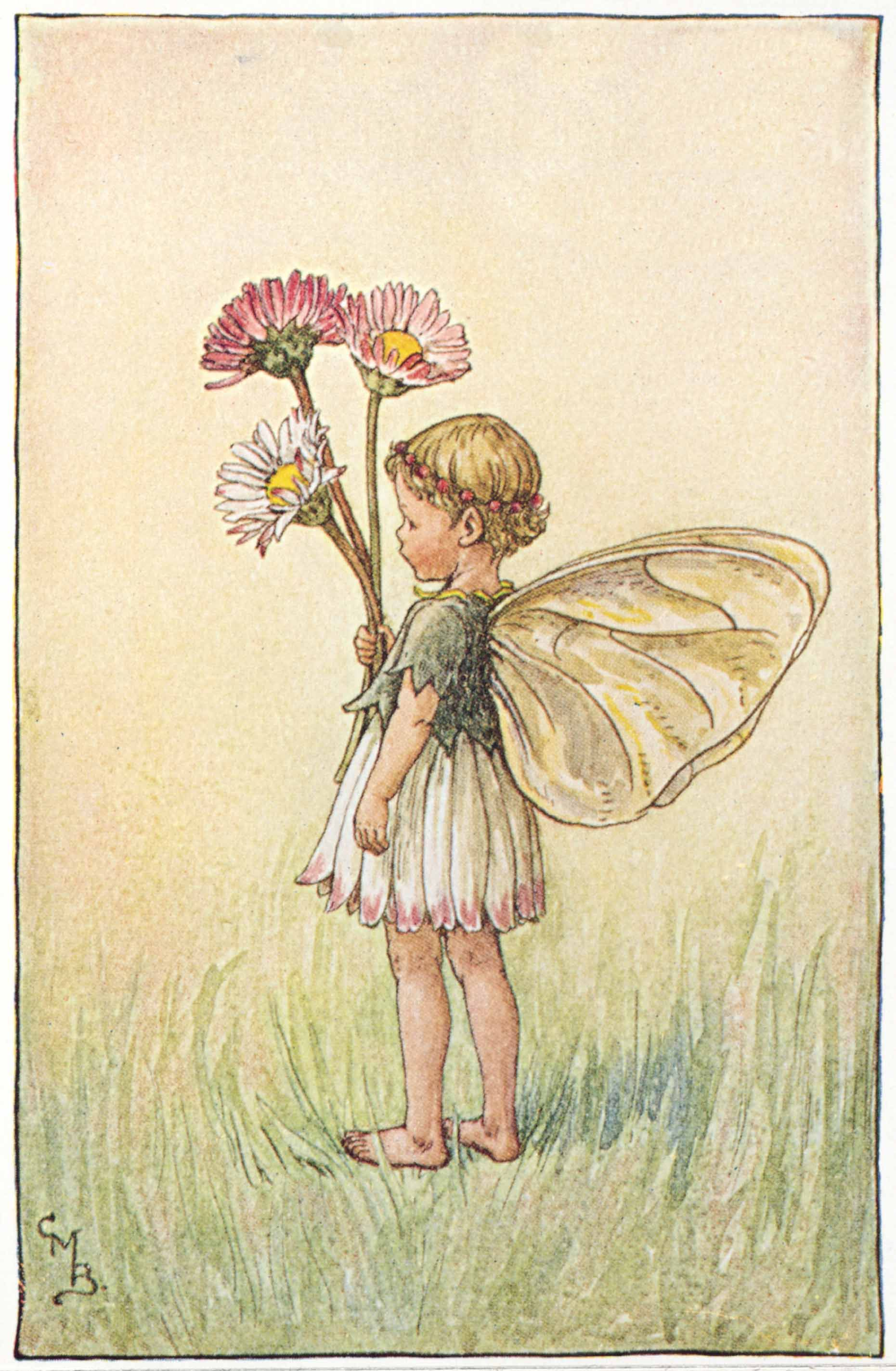 Illustration for the daisy fairy from flower fairies of the spring illustration for the daisy fairy from flower fairies of the spring a small girl fairy stands facing left with a bunch of daisies in her right hand izmirmasajfo