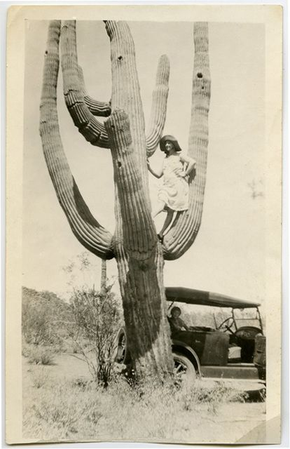 """""""Lolly Pop up in a cactus."""" ±1920s.  From the collection of Angelica Paez."""