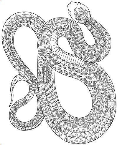 Zanimals Snake Coloring Page Adult Coloring Book Pages One Page